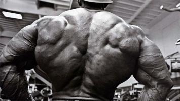Советы для создания широкой спины