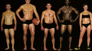 Типы телосложений в бодибилдинге