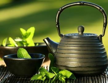 Зеленый чай в бодибилдинге