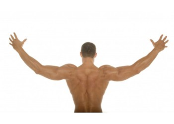 Как помочь мышцам вырасти