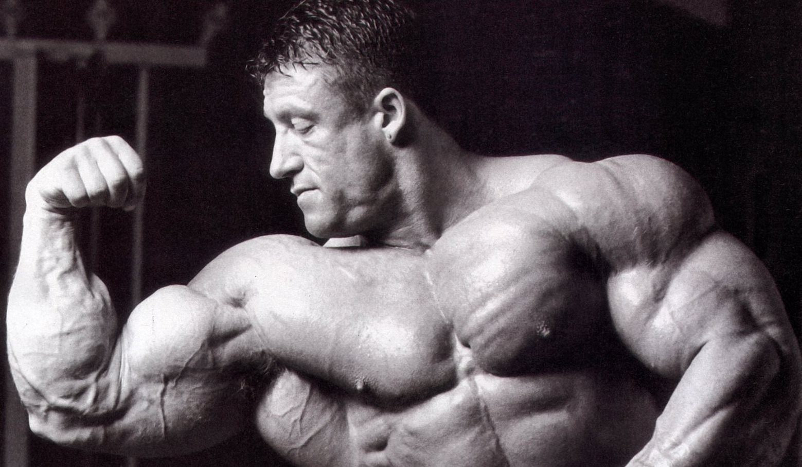 тренировка программа для мужчин мышечная масса