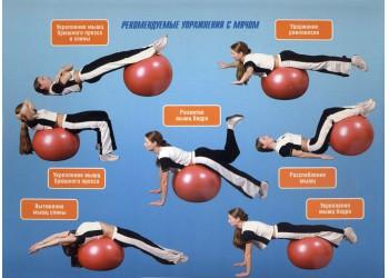 Основные упражнения с фитболом