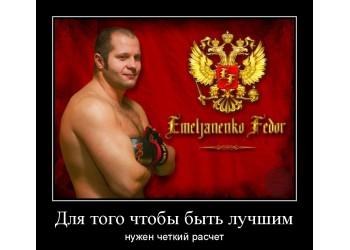 Федор Емельяненко: всегда нужен расчет